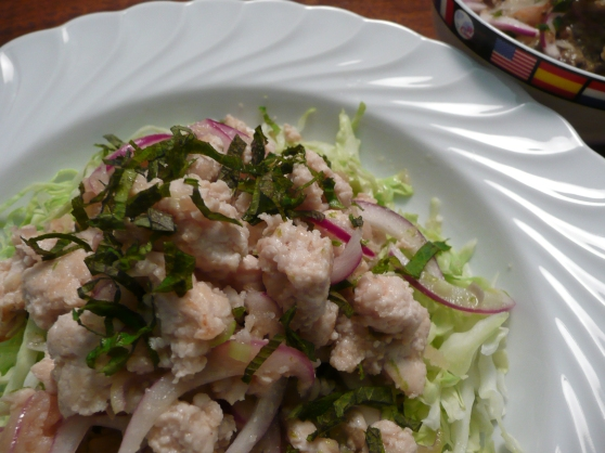 Laab Gai, Thai Chicken Salad